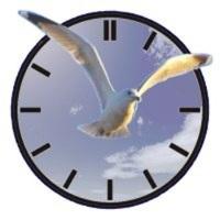 orologio-con-colomba1